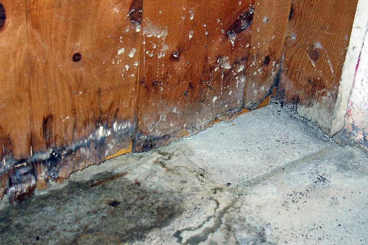 DIY Water Damager Restoration